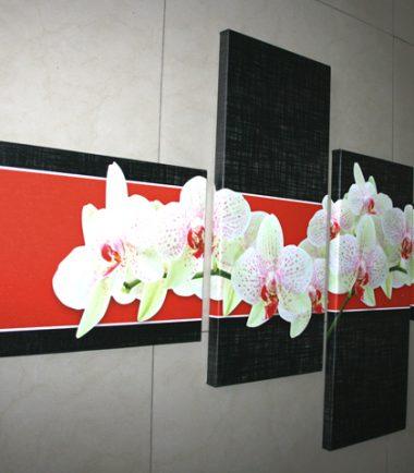 бели орхидеи червен черен фон