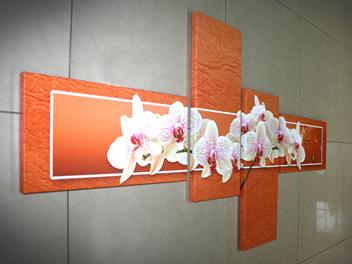 бели орхидеи оранжев фон