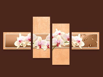 пано бели орхидеи прасковен фон