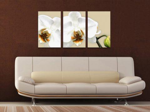 картина бяла орхидея 3 части