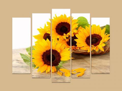 слънчогледи 5 части