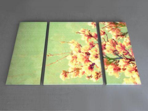пролет цвят дърво картина