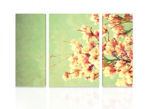 пролет цвят дърво