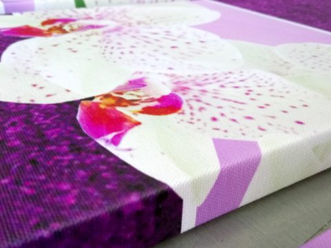 бели орхидеи лилав фон