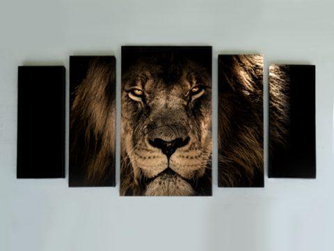 картина лъв 5 части