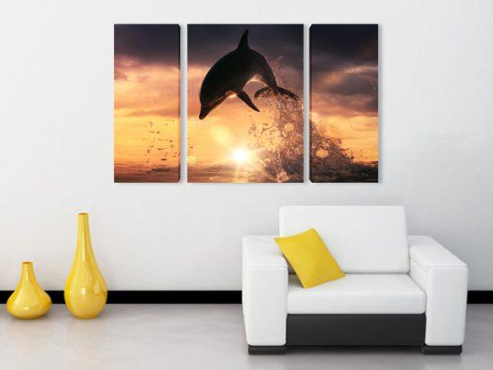 картини делфин канава 3 части