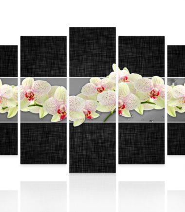 пано орхидеи сиво 5 части канава