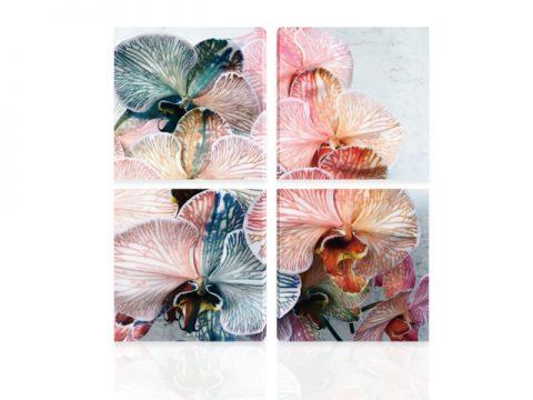 пано орхидея многоцветна от 4 части канава