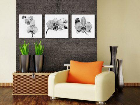 картина орхидеи графика, онлайн магазин картини